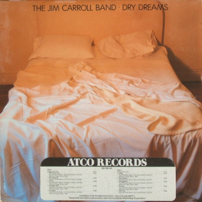 cover Jim Carroll Band - Dry Dreams