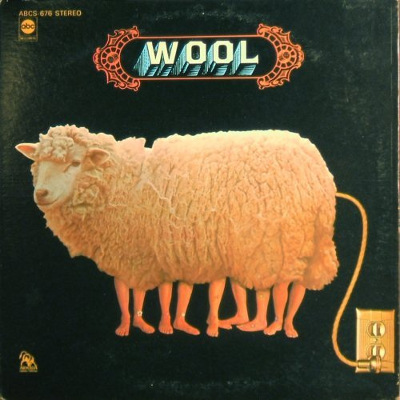 wool - front cover